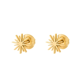 Wishing On Silver 925 18k Yellow Gold Plated Stud Earrings-