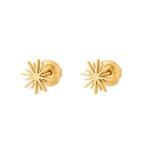 Wishing On Silver 925 18k Yellow Gold Plated Καρφωτά Σκουλαρίκια-