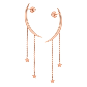 Wishing On Silver 925 18k Rose Gold Plated Long Earrings-