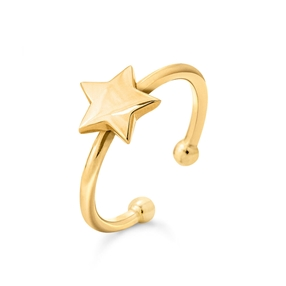 Wishing On Silver 925 18k Yellow Gold Plated Δαχτυλίδι-