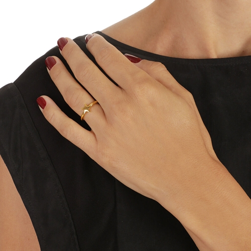 Wishing On Silver 925 18k Yellow Gold Plated Adjustable Ring-