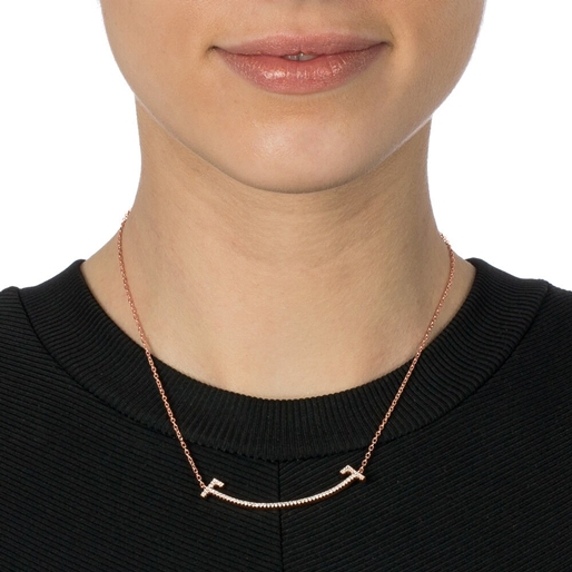 My FF Silver 925 Rose Gold Flash Plated Short Necklace -