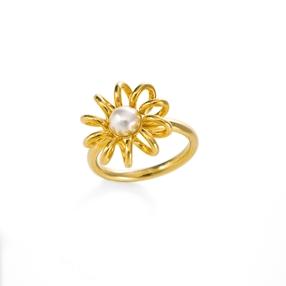 Dainty World Silver 925 18k Yellow Gold Plated Δαχτυλίδι-