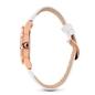 Lifetime Ora Big Case Strap Watch-